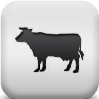 畜牧检疫管理系统