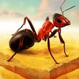 蚂蚁进化模拟器安卓版